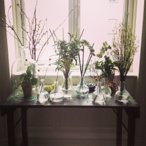 Objects & Use plant styling-10