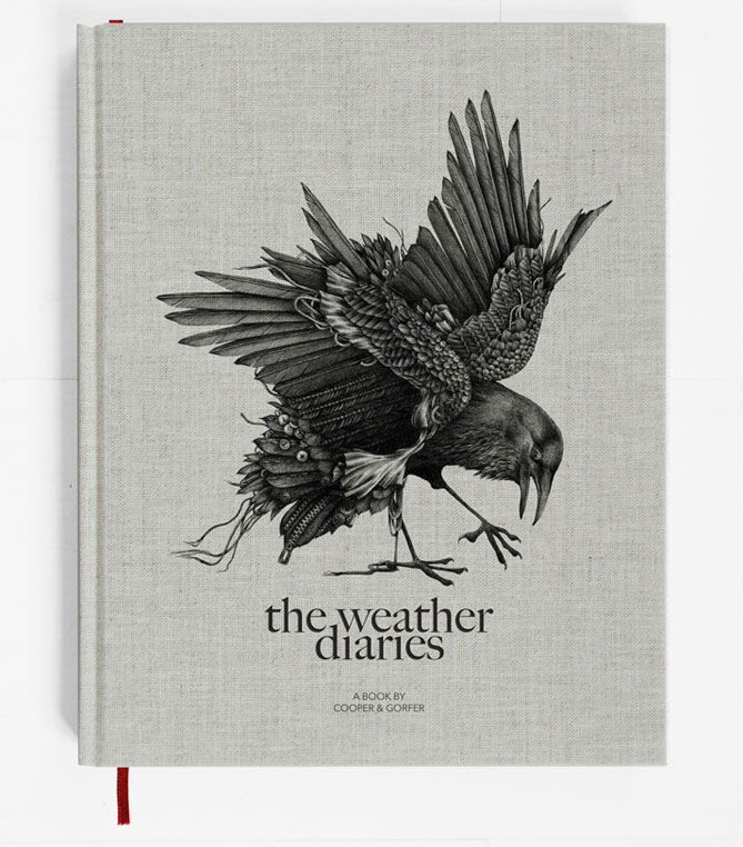 The-Weather-Diaries-cooper-gorfer-gestalten
